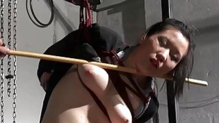 Japanese spanking and asian suspension bondage