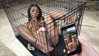 Sarah Banks being in the cage getting filmed on the smartphone